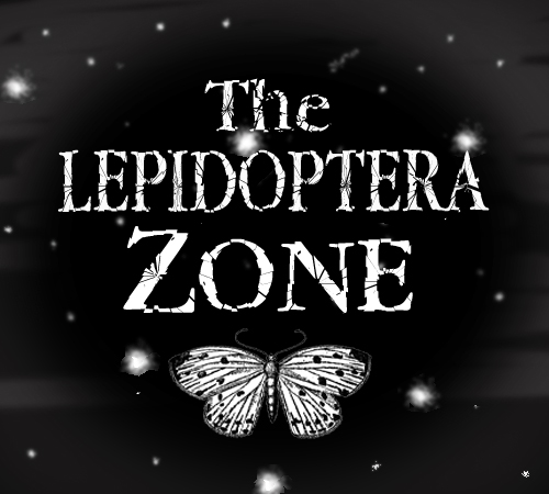 Enter The Lepidoptera Zone….