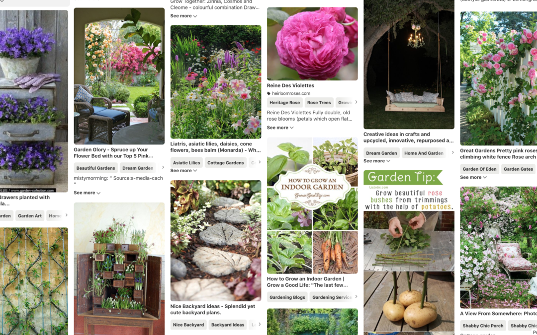 Share Your Pinterest Boards!