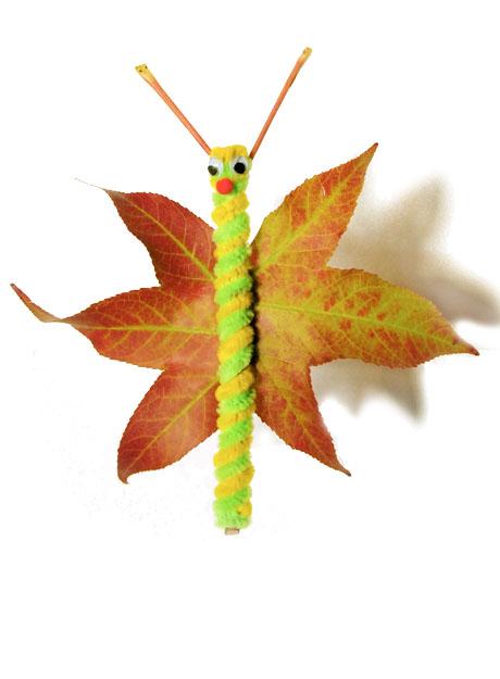 Fall into Butterflies…
